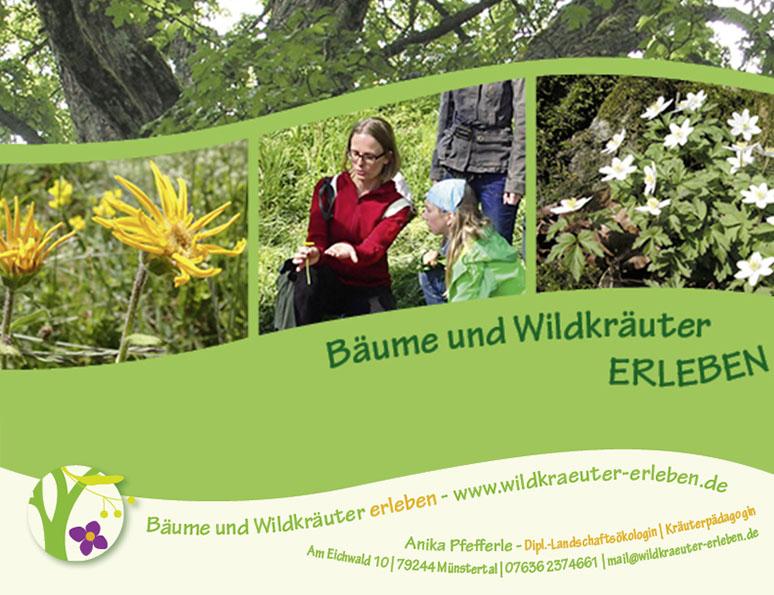 web-und grafikdesign katrin birke, bollschweil/ freiburg, referenz logo und printprodukte für wildkräuter erleben